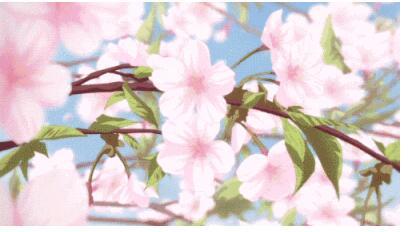 花瓣小尾巴的樱花符号怎么打?花瓣小尾巴的樱花符号可复制